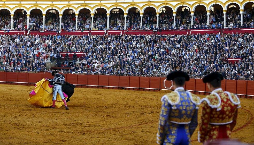 Bullfighting Season