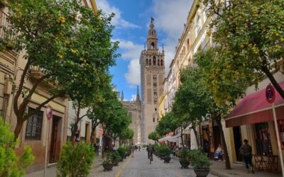 Tour of the ancient Jewish and Islamic quarters of Seville